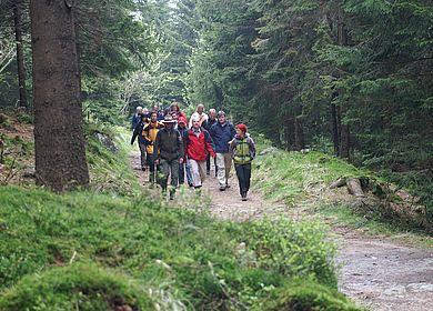 Wanderung auf Goetheweg