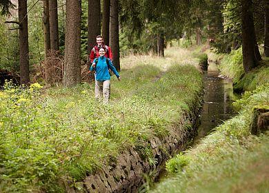 Wandern am Oberharzer Wasserwirtschaft